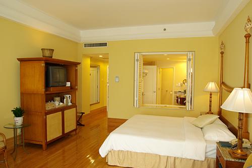 > 博鳌金海岸温泉大酒店      棕榈岛高级